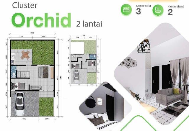 Layout rumah cluster Orchid 2 lantai perumahan di parung panjang